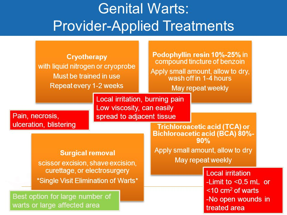  Genital Warts: Provider-Applied Treatments Cryotherapy with liquid nitrogen or cryoprobe Must be trained in use Repeat every 1-2 weeks Podophyllin r
