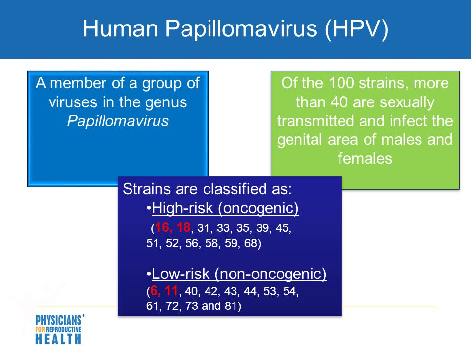 Human Papillomavirus (HPV) A member of a group of viruses in the genus Papillomavirus Of the 100 strains, more than 40 are sexually transmitted and