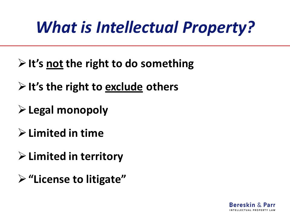 IP License Agreements - WHAT  WHAT DOES THE LICENSOR GET.