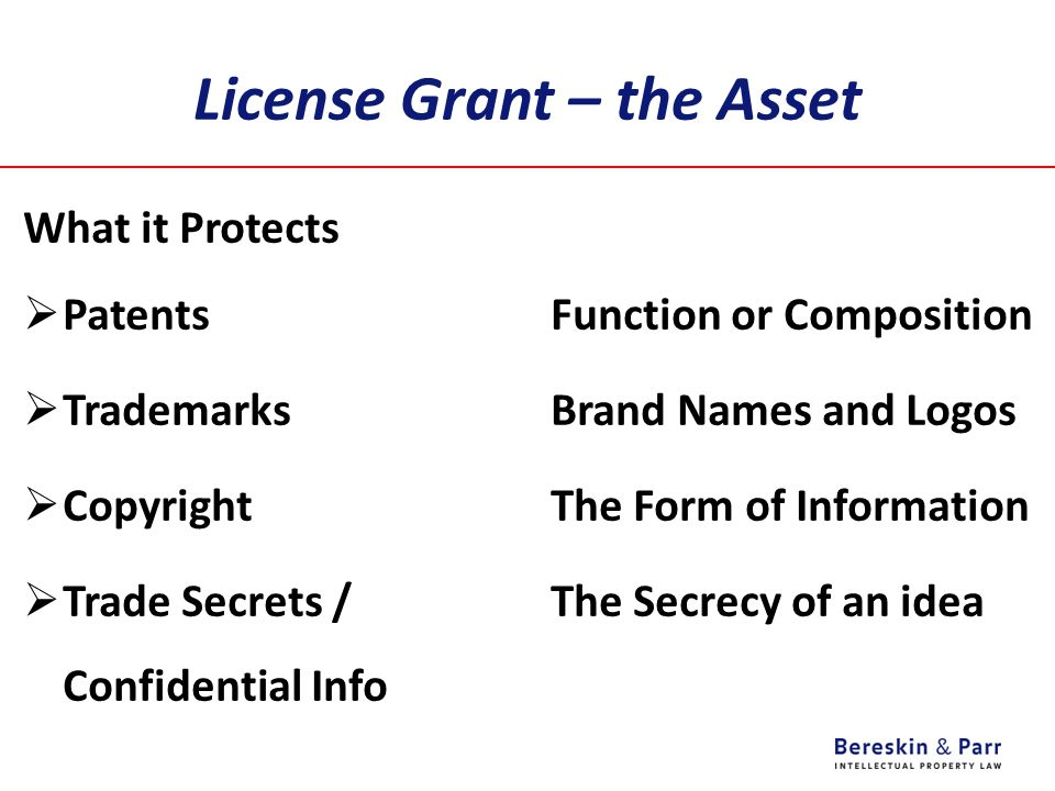 License Grant – the Asset What it Protects  PatentsFunction or Composition  TrademarksBrand Names and Logos  CopyrightThe Form of Information  Tra