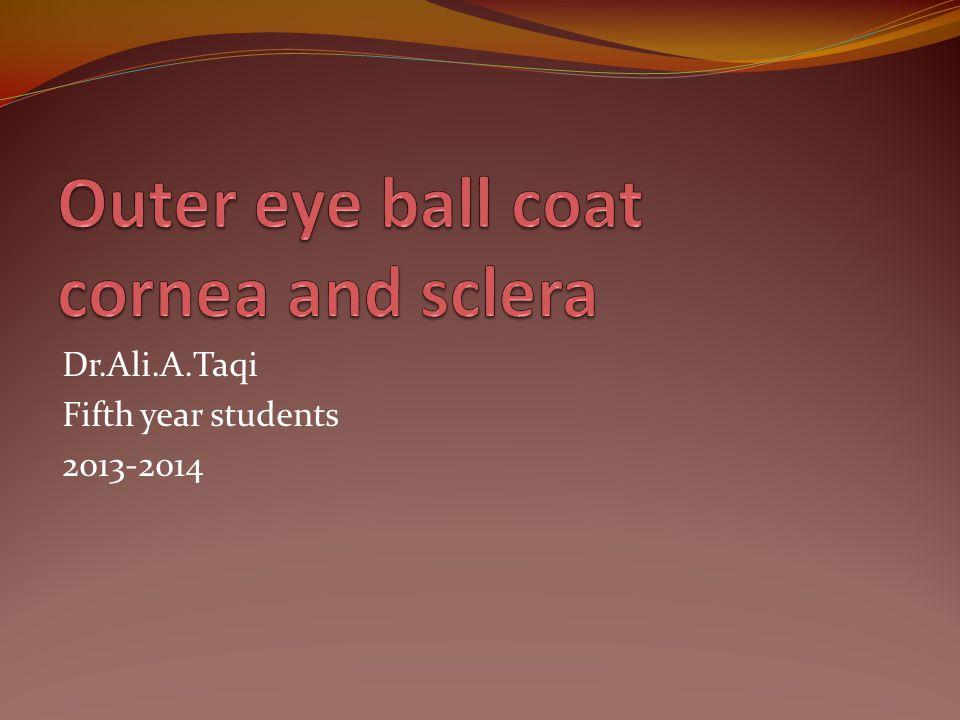 Dr.Ali.A.Taqi Fifth year students 2013-2014