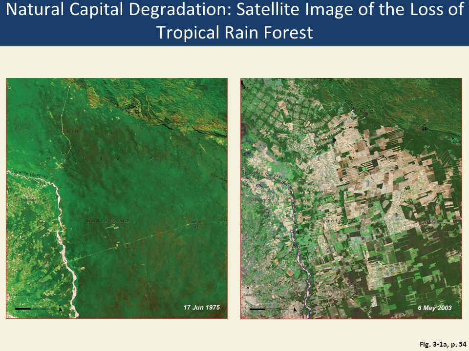 Natural Capital Degradation: Satellite Image of the Loss of Tropical Rain Forest Fig. 3-1a, p. 54