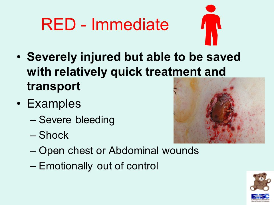 RED - Immediate Severely injured but able to be saved with relatively quick treatment and transport Examples –Severe bleeding –Shock –Open chest or Ab