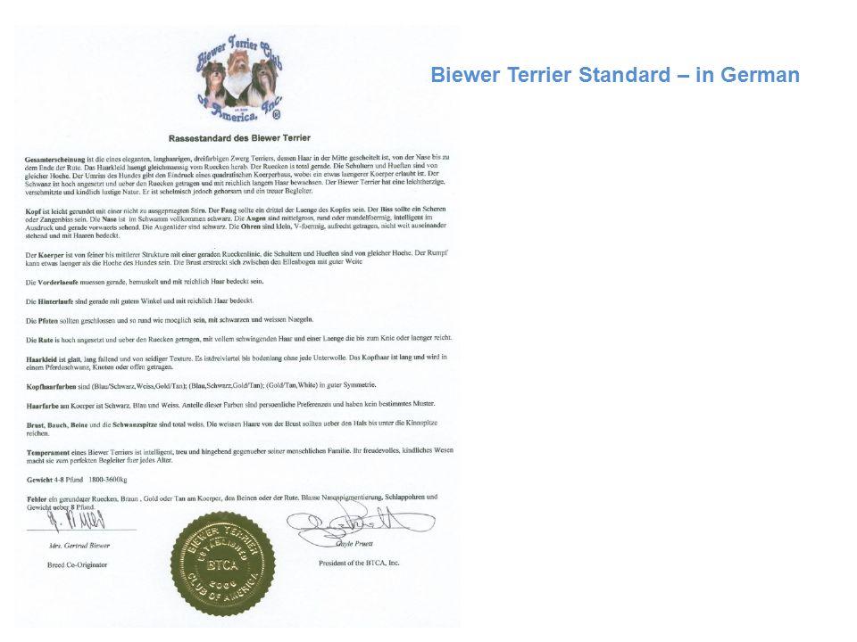 Biewer Terrier Standard – in German