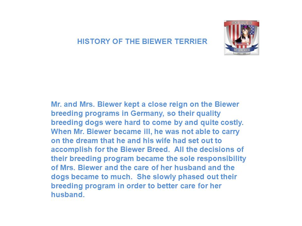 Mr. and Mrs. Biewer kept a close reign on the Biewer breeding programs in Germany, so their quality breeding dogs were hard to come by and quite costl