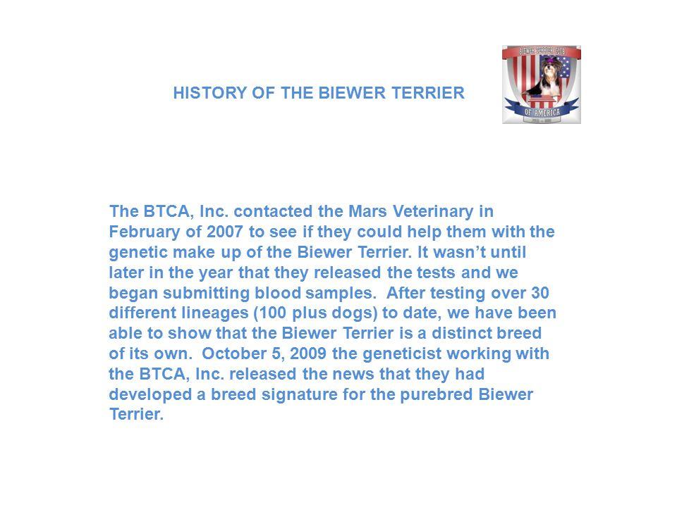 The BTCA, Inc.