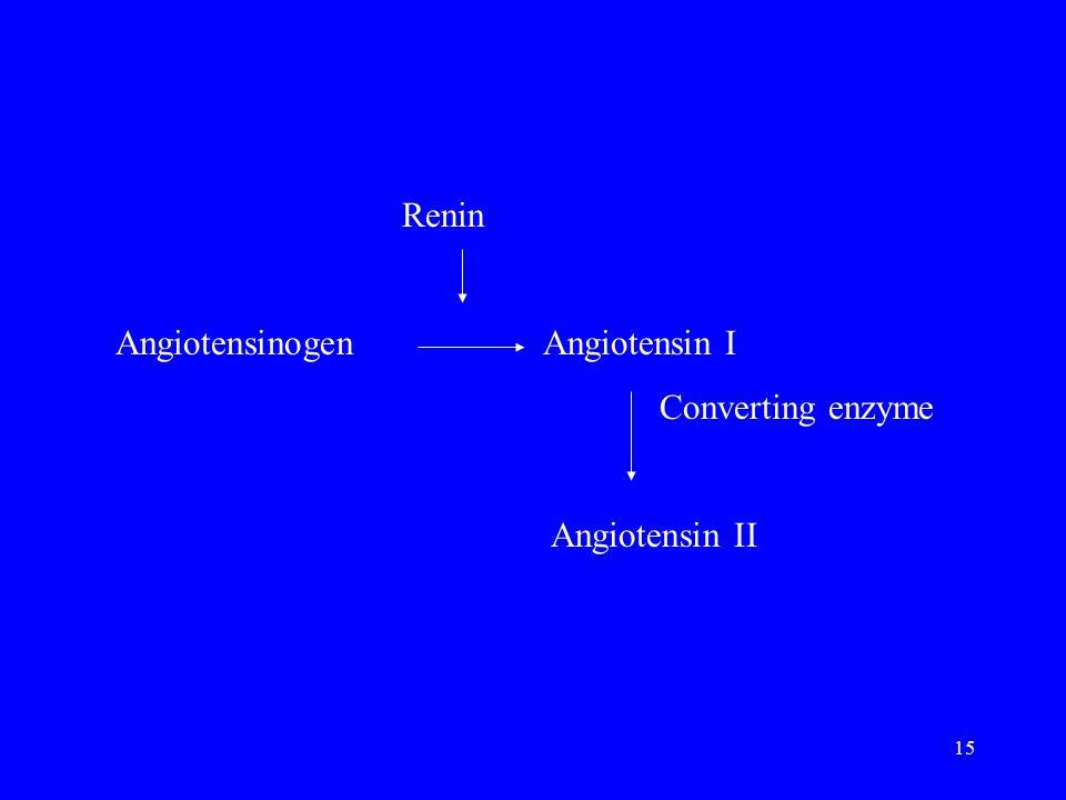 15 Renin Angiotensinogen Angiotensin I Converting enzyme Angiotensin II