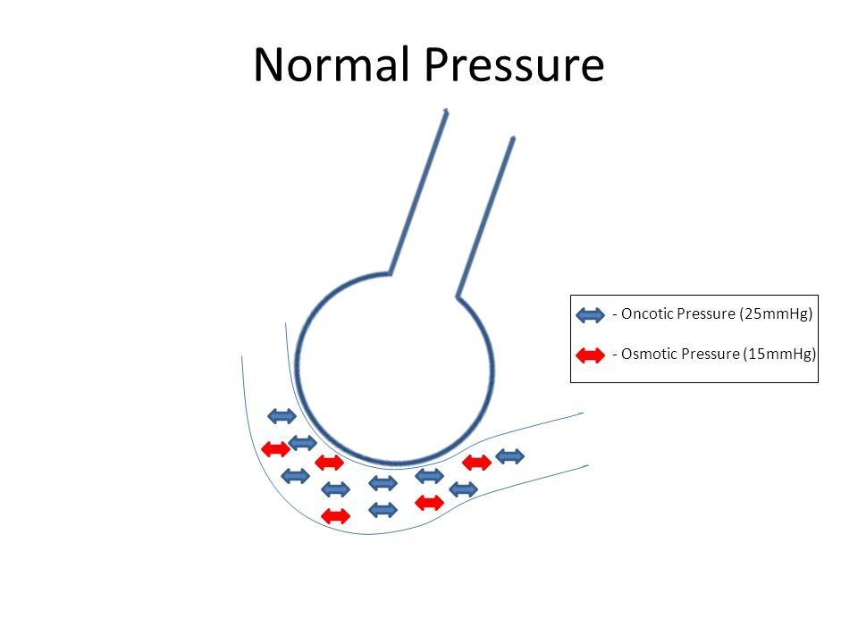 Normal Pressure - Oncotic Pressure (25mmHg) - Osmotic Pressure (15mmHg)