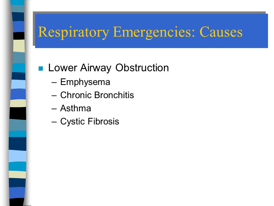 Respiratory Emergencies: Causes n Lower Airway Obstruction –Emphysema –Chronic Bronchitis –Asthma –Cystic Fibrosis