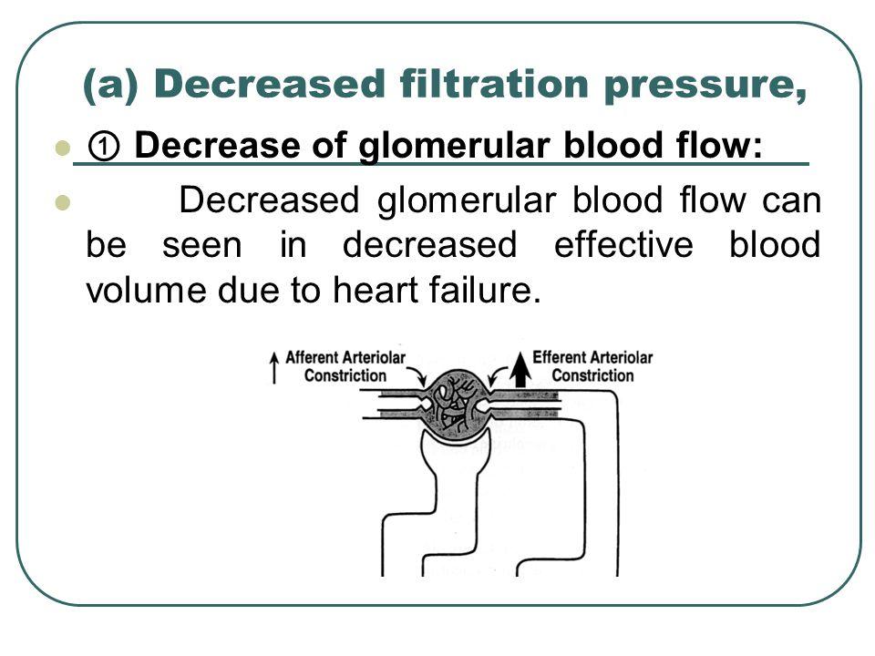 (a) Decreased filtration pressure, ① Decrease of glomerular blood flow: Decreased glomerular blood flow can be seen in decreased effective blood volum