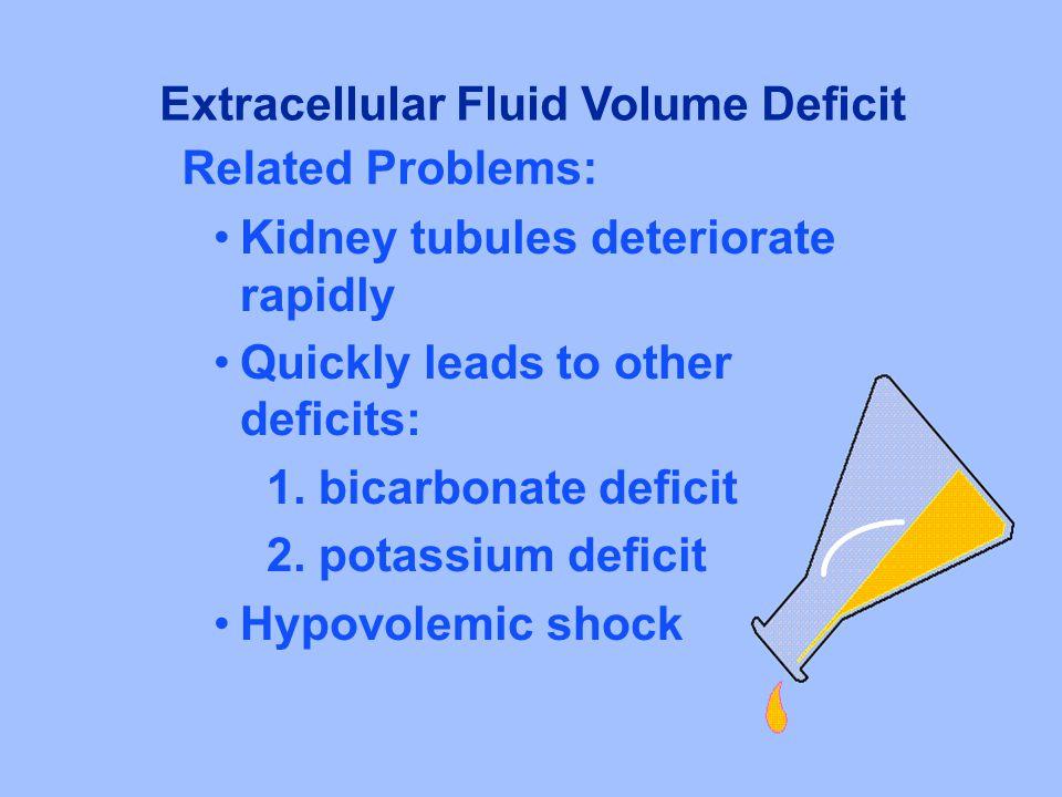 Kidney tubules deteriorate rapidly Quickly leads to other deficits: 1. bicarbonate deficit 2. potassium deficit Hypovolemic shock Extracellular Fluid