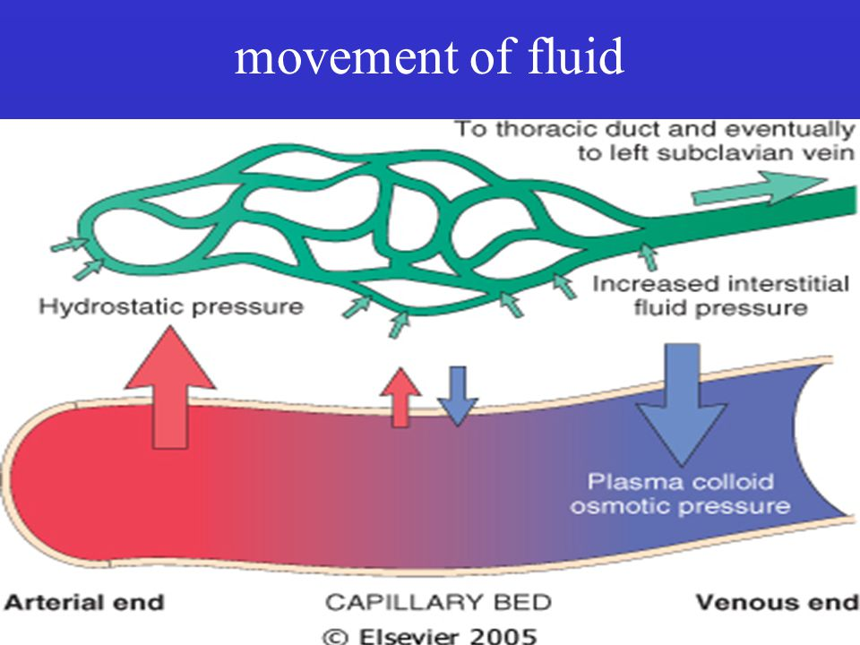 movement of fluid