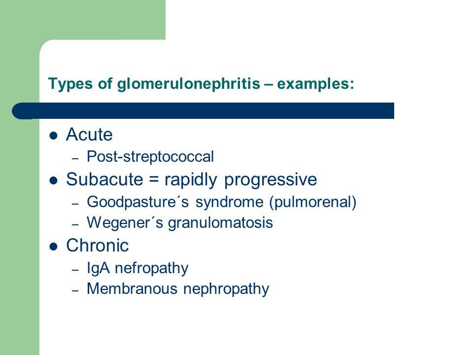 Types of glomerulonephritis – examples: Acute – Post-streptococcal Subacute = rapidly progressive – Goodpasture´s syndrome (pulmorenal) – Wegener´s gr