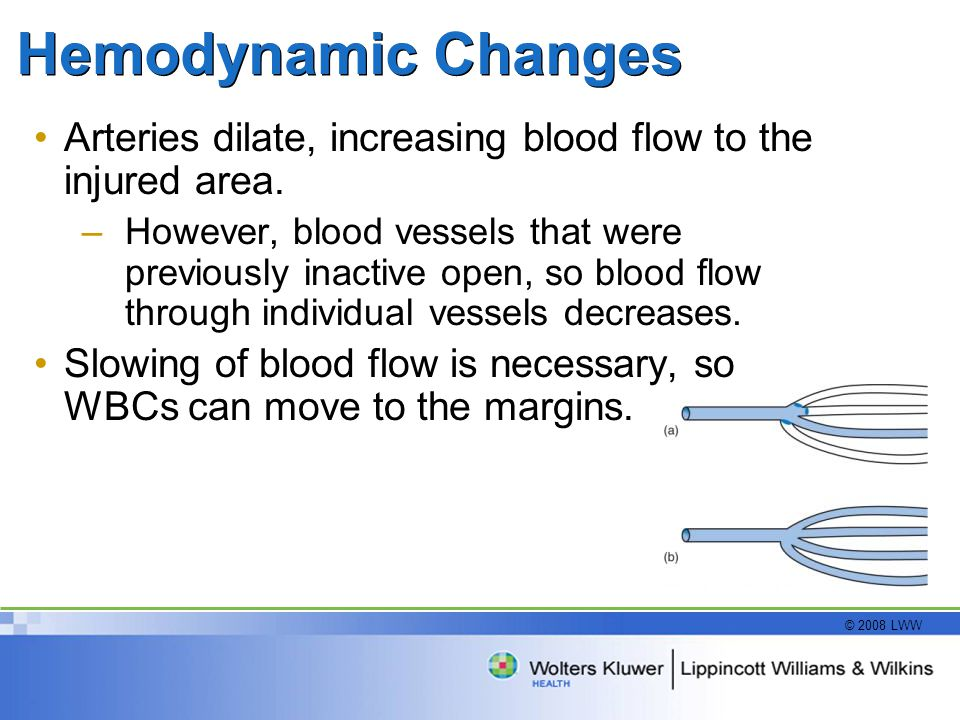© 2008 LWW Hemodynamic Changes Arteries dilate, increasing blood flow to the injured area. –However, blood vessels that were previously inactive open,