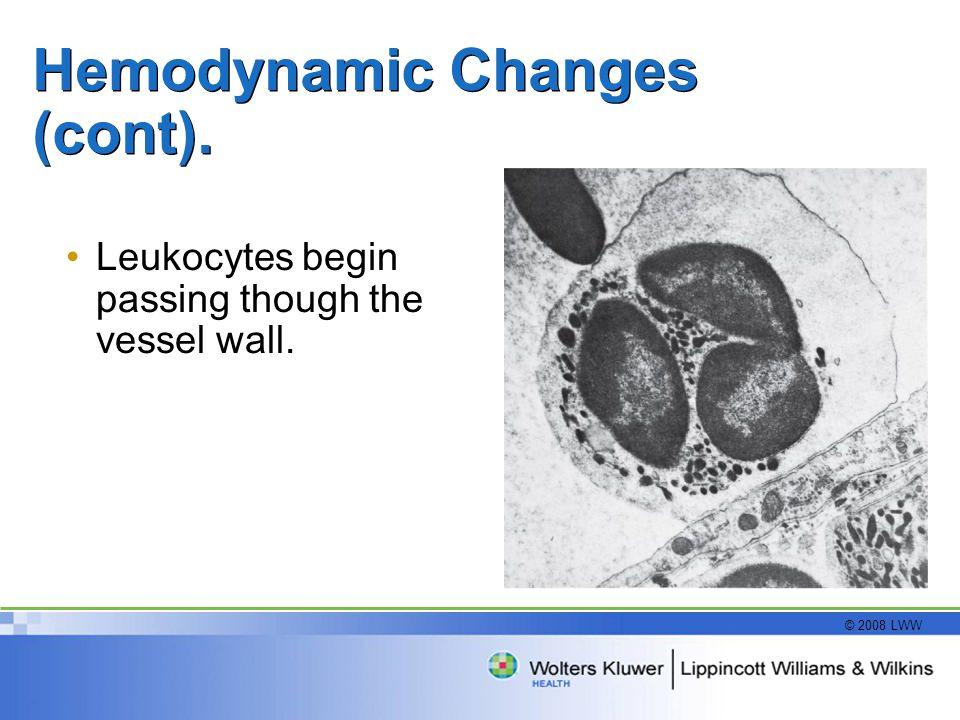 © 2008 LWW Hemodynamic Changes (cont). Leukocytes begin passing though the vessel wall.