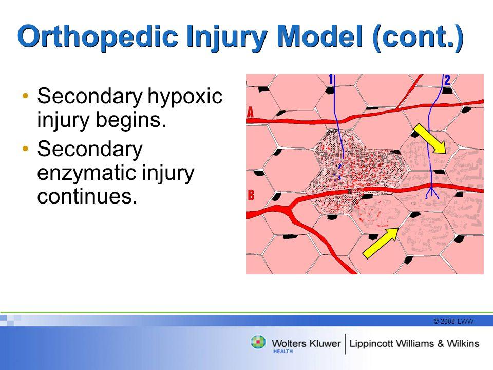 © 2008 LWW Orthopedic Injury Model (cont.) Secondary hypoxic injury begins. Secondary enzymatic injury continues.