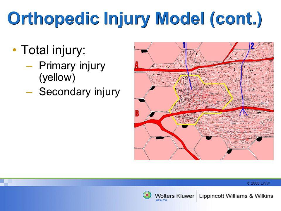 © 2008 LWW Orthopedic Injury Model (cont.) Total injury: –Primary injury (yellow) –Secondary injury