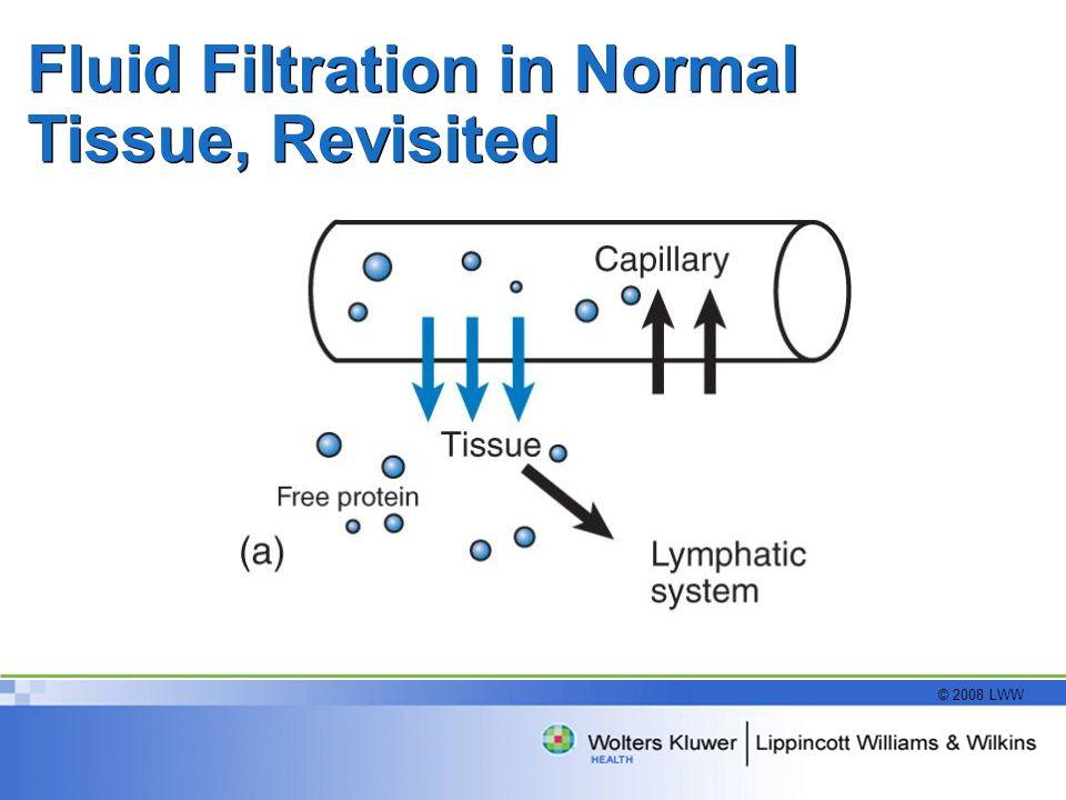 © 2008 LWW Fluid Filtration in Normal Tissue, Revisited