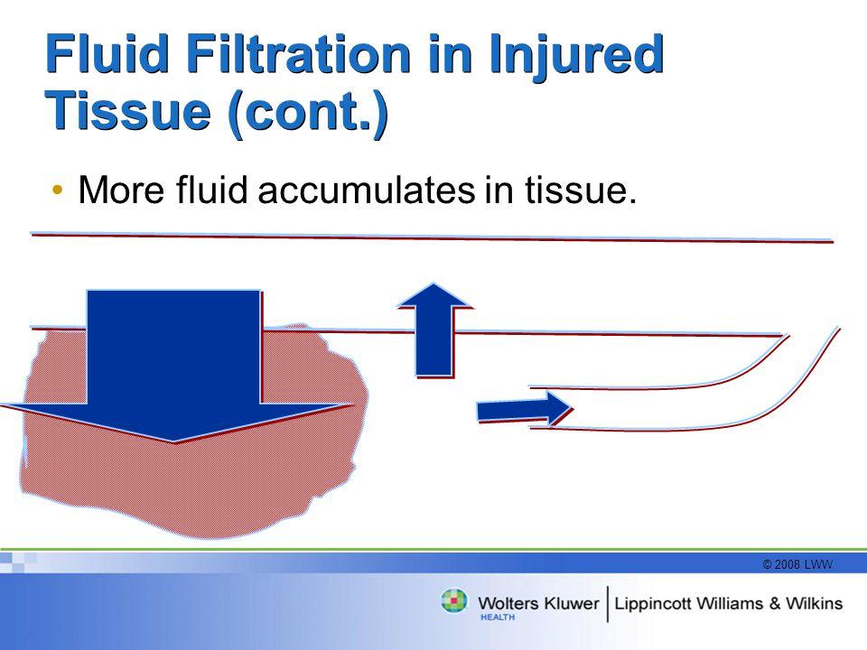 © 2008 LWW Fluid Filtration in Injured Tissue (cont.) More fluid accumulates in tissue.