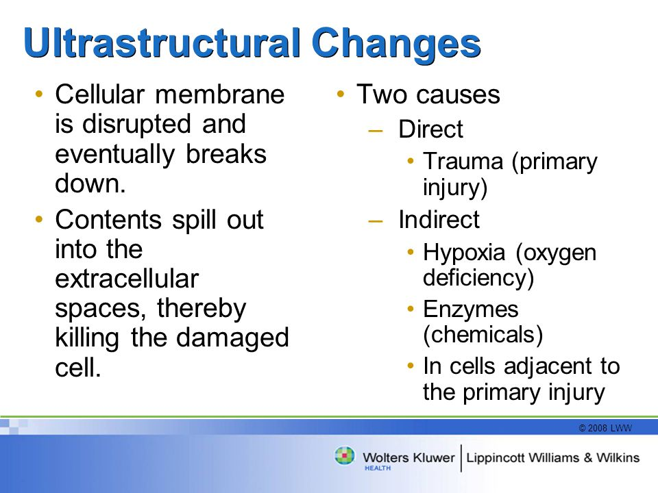 © 2008 LWW Ultrastructural Changes Cellular membrane is disrupted and eventually breaks down. Contents spill out into the extracellular spaces, thereb