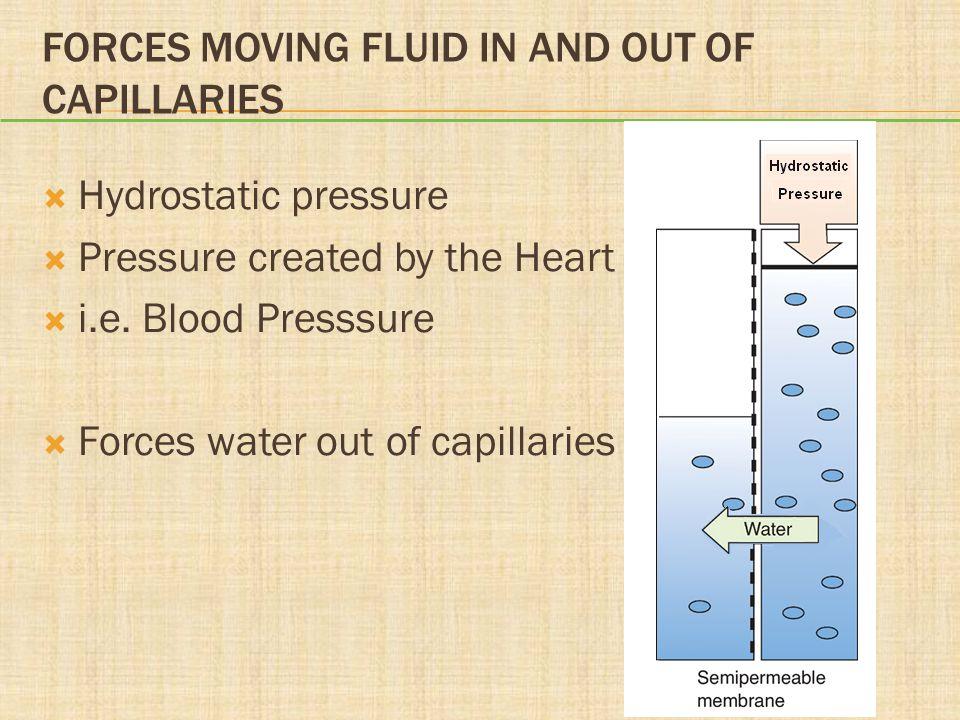 SODIUM IMBALANCES  Hyponatremia (<135 mEq/L)  Hypertonic  Hypotonic (dilutional)  Hypernatremia (>145 mEq/L)  Water deficit  Na + administration