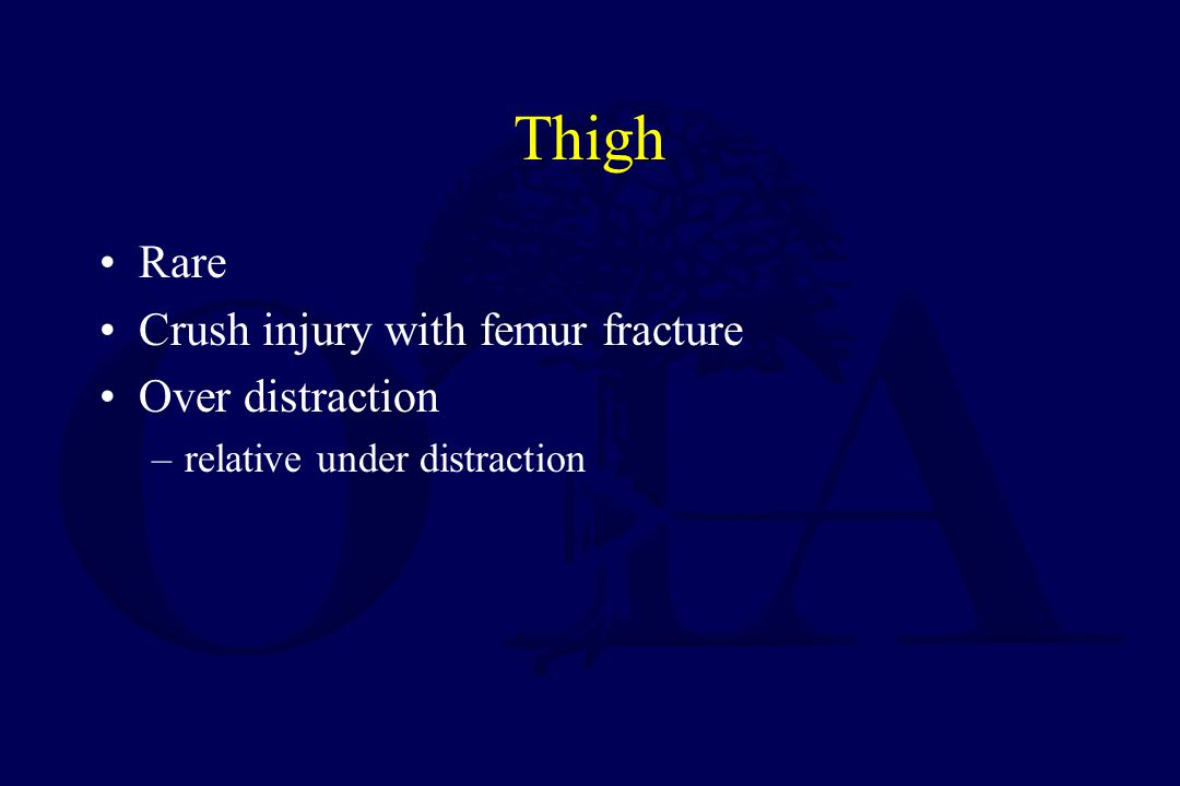 Thigh Quadriceps –Lateral Hamstrings –Posterior Abductor –Medial
