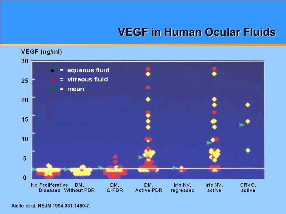 VEGF in Human Ocular Fluids Aiello et al. NEJM 1994;331:1480-7.