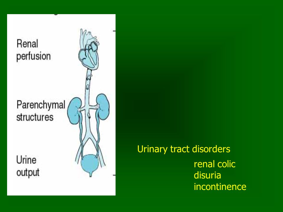 Urinary tract disorders renal colic disuria incontinence