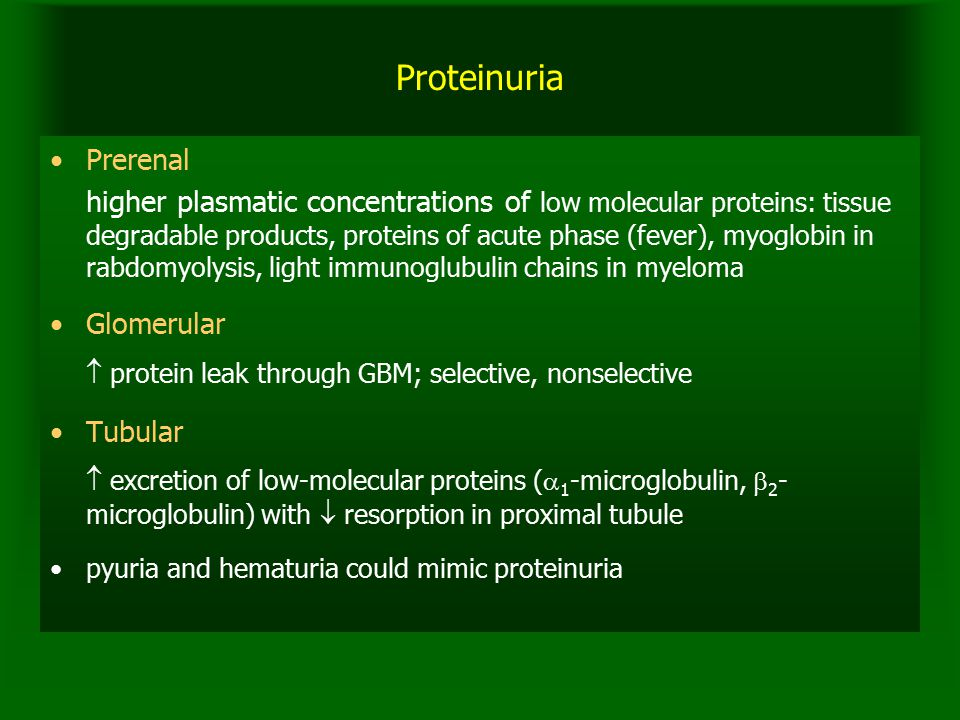 Proteinuria Prerenal higher plasmatic concentrations of low molecular proteins: tissue degradable products, proteins of acute phase (fever), myoglobin in rabdomyolysis, light immunoglubulin chains in myeloma Glomerular  protein leak through GBM; selective, nonselective Tubular  excretion of low-molecular proteins (  1 -microglobulin,  2 - microglobulin) with  resorption in proximal tubule pyuria and hematuria could mimic proteinuria