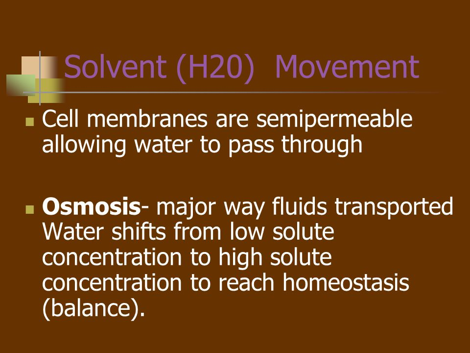 Osmolarity Concentration of particles in solution The greater the concentration (Osmolarity) of a solution, the greater the pulling force (Osmotic pressure) Normal serum (blood) osmolarity = 280-295 mOSM/kg A solution that has HIGH osmolarity is one that is > serum osmolarity = HYPERTONIC solution A solution that has LOW osmolarity is one that is < serum osmolarity = HYPOTONIC solution A solution that has equal osmolarity as serum = ISOTONIC solution