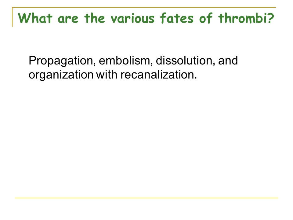 What are the various fates of thrombi.