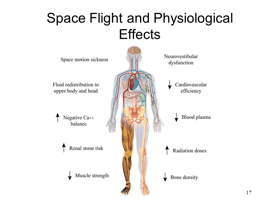 17 Space Flight and Physiological Effects