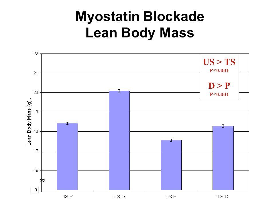 39 Myostatin Blockade Lean Body Mass US > TS P<0.001 D > P P<0.001