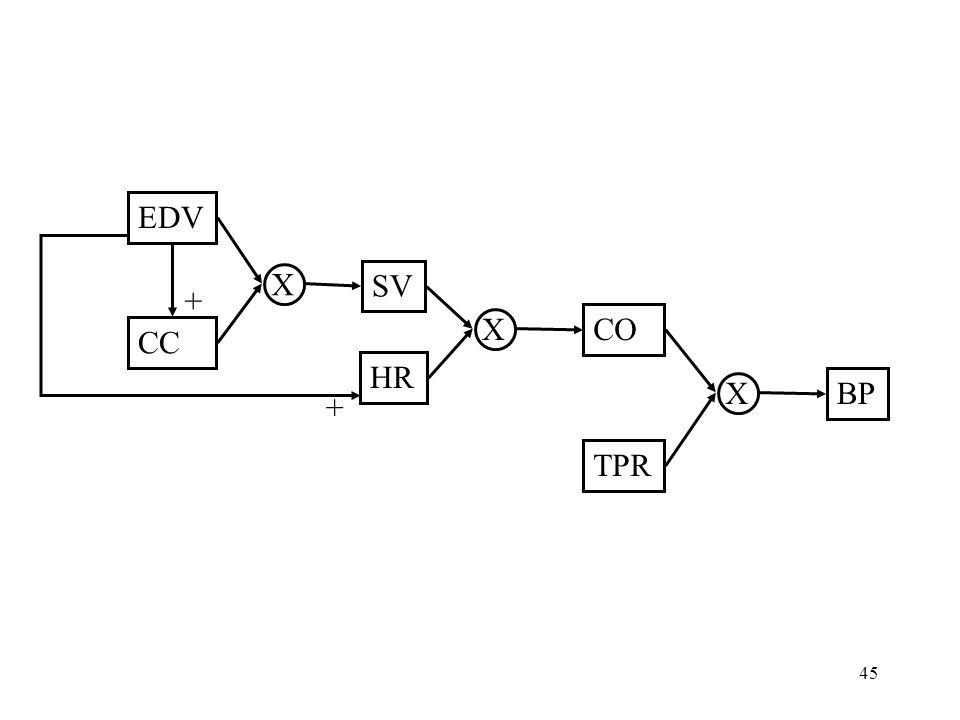 45 EDV CC SV HR TPR BP X CO X X + +