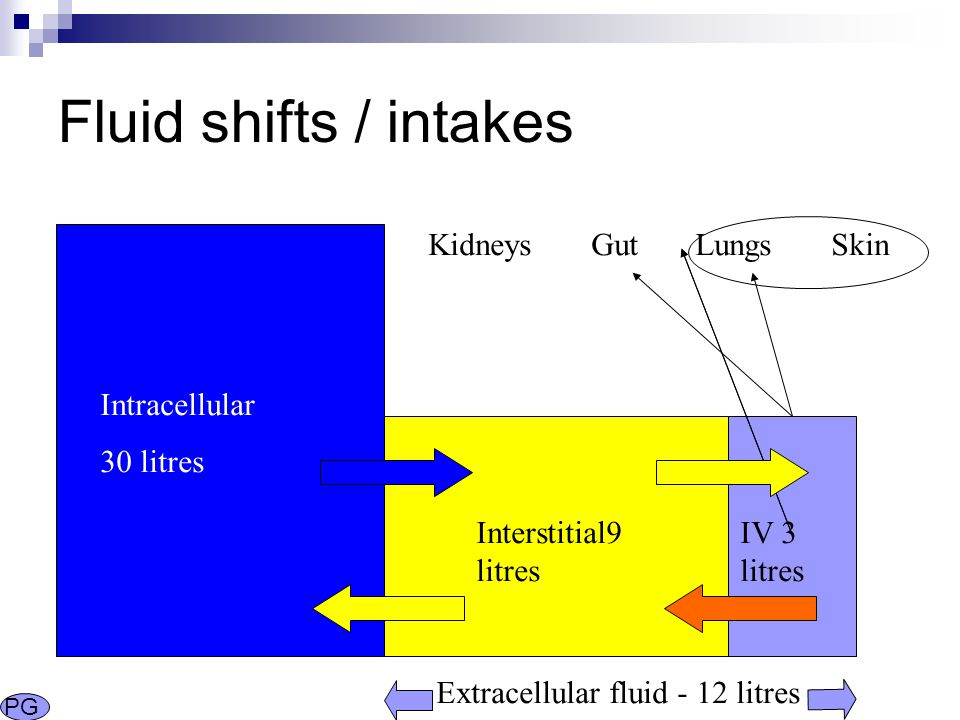 Fluid shifts / intakes Intracellular 30 litres Interstitial9 litres IV 3 litres Kidneys Gut Lungs Skin Extracellular fluid - 12 litres PG