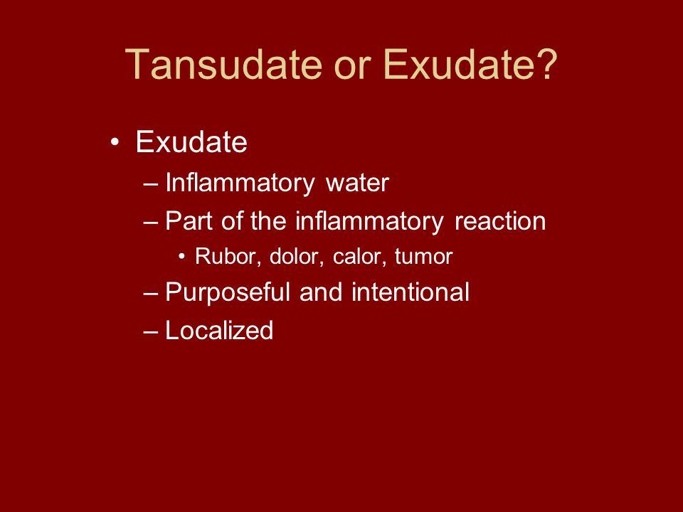 Tansudate or Exudate.