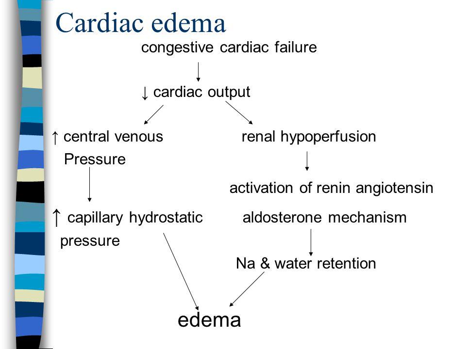 Acute tubular injury Toxins, drugs ATN Fails to excrete Na & water edema