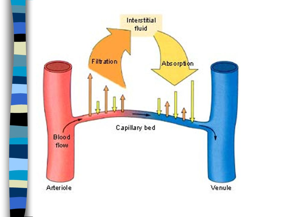 Normal fluid exchange There are two ends for a capillary 1. Arteriolar end 2. Venous end The pressure is high in the arteriolar end then the venous en
