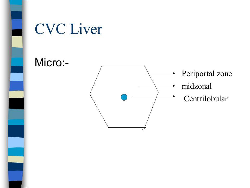 CVC Liver Causes:- 1. Right heart failure 2. Occlusion of inferior vena cava or portal vein. GROSS APPEARANCE:- NUTMEG APPEARANCE – Alternate areas of