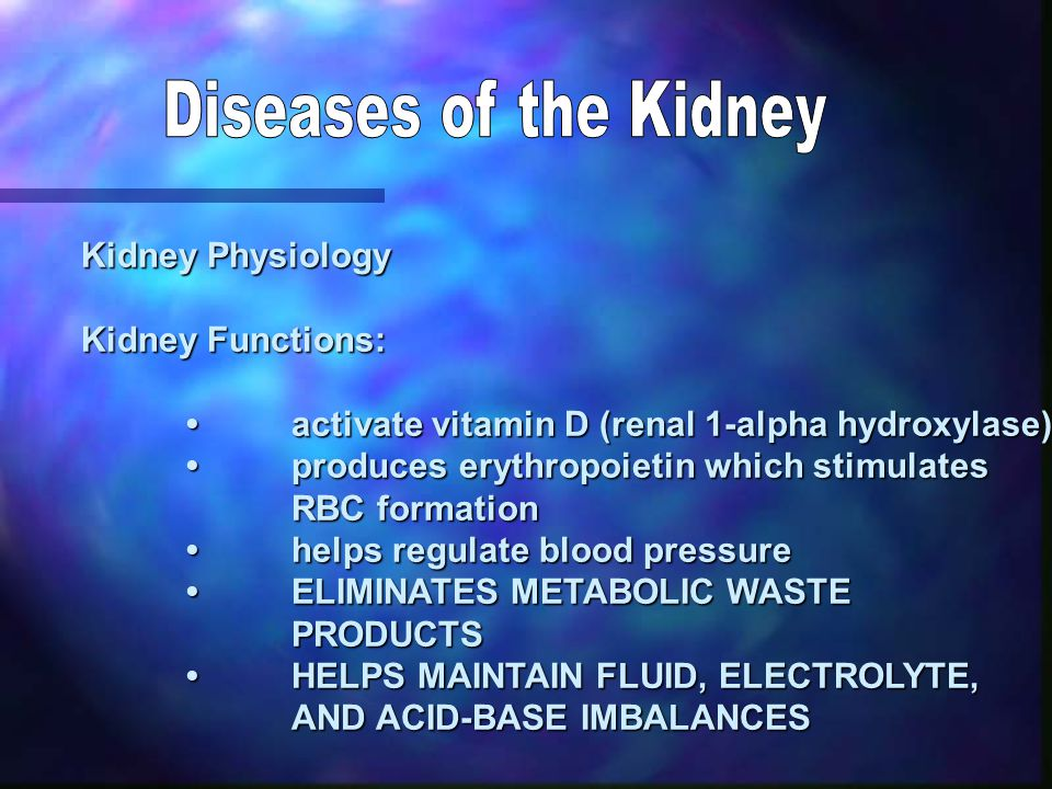 Kidney Physiology Kidney Functions: activate vitamin D (renal 1-alpha hydroxylase)activate vitamin D (renal 1-alpha hydroxylase) produces erythropoietin which stimulatesproduces erythropoietin which stimulates RBC formation helps regulate blood pressurehelps regulate blood pressure ELIMINATES METABOLIC WASTEELIMINATES METABOLIC WASTEPRODUCTS HELPS MAINTAIN FLUID, ELECTROLYTE,HELPS MAINTAIN FLUID, ELECTROLYTE, AND ACID-BASE IMBALANCES