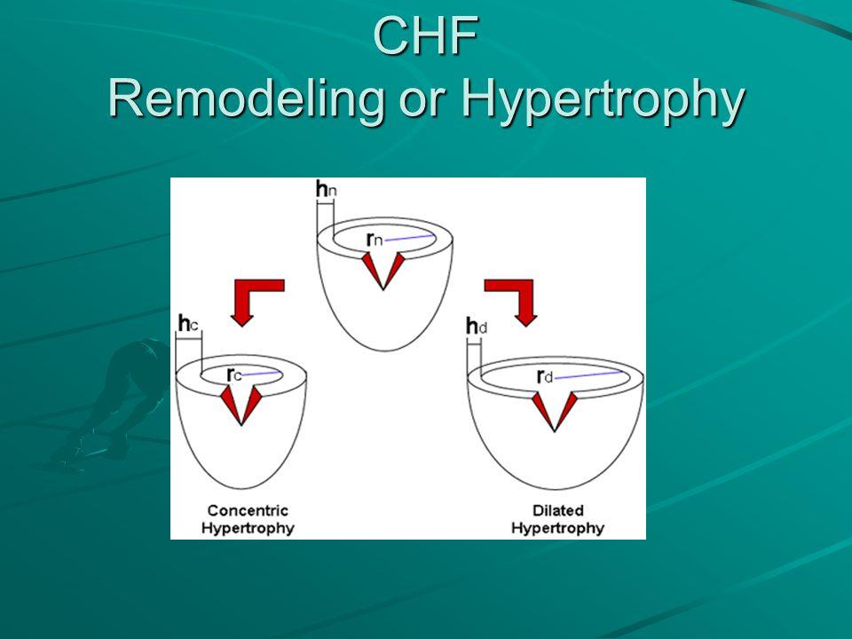 CHF Remodeling or Hypertrophy