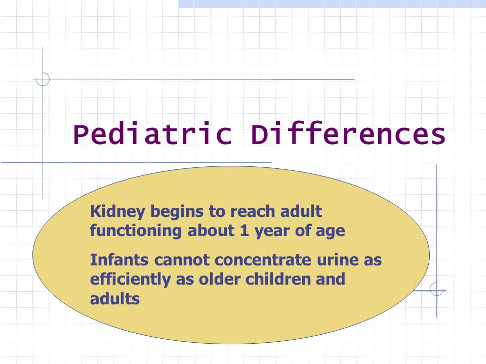 Pediatric Differences Kidney begins to reach adult functioning about 1 year of age Infants cannot concentrate urine as efficiently as older children a