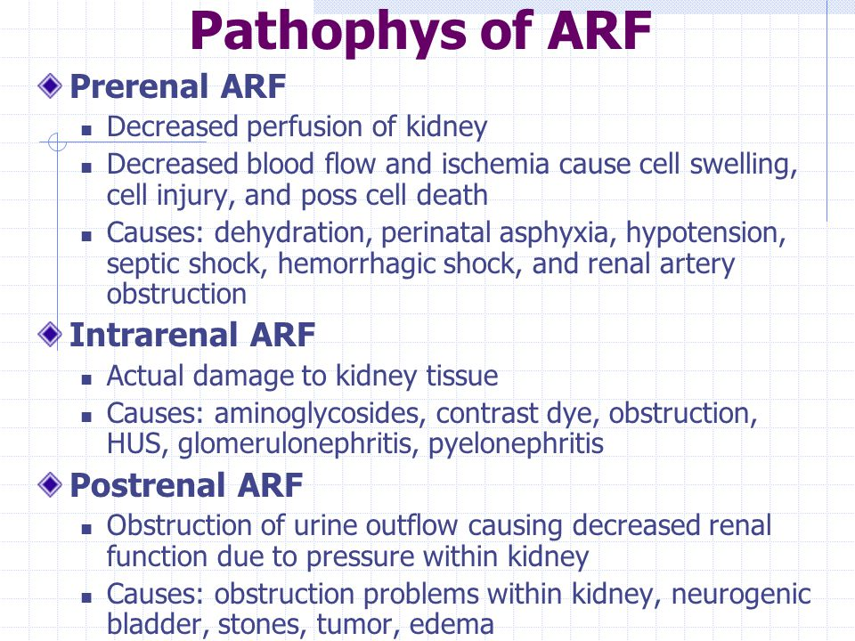 Pathophys of ARF Prerenal ARF Decreased perfusion of kidney Decreased blood flow and ischemia cause cell swelling, cell injury, and poss cell death Ca