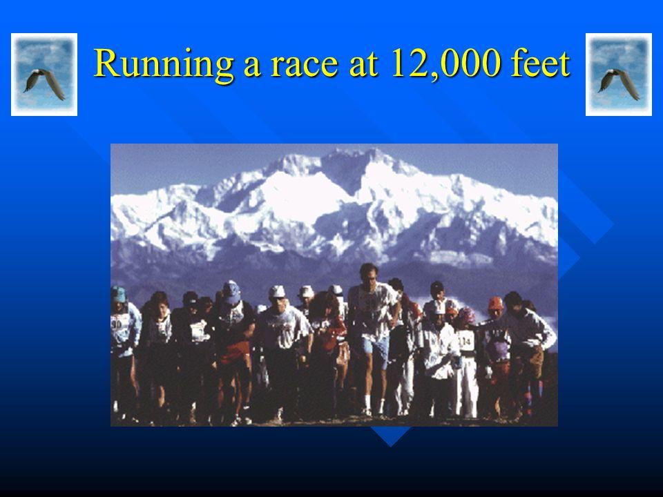 Running a race at 12,000 feet