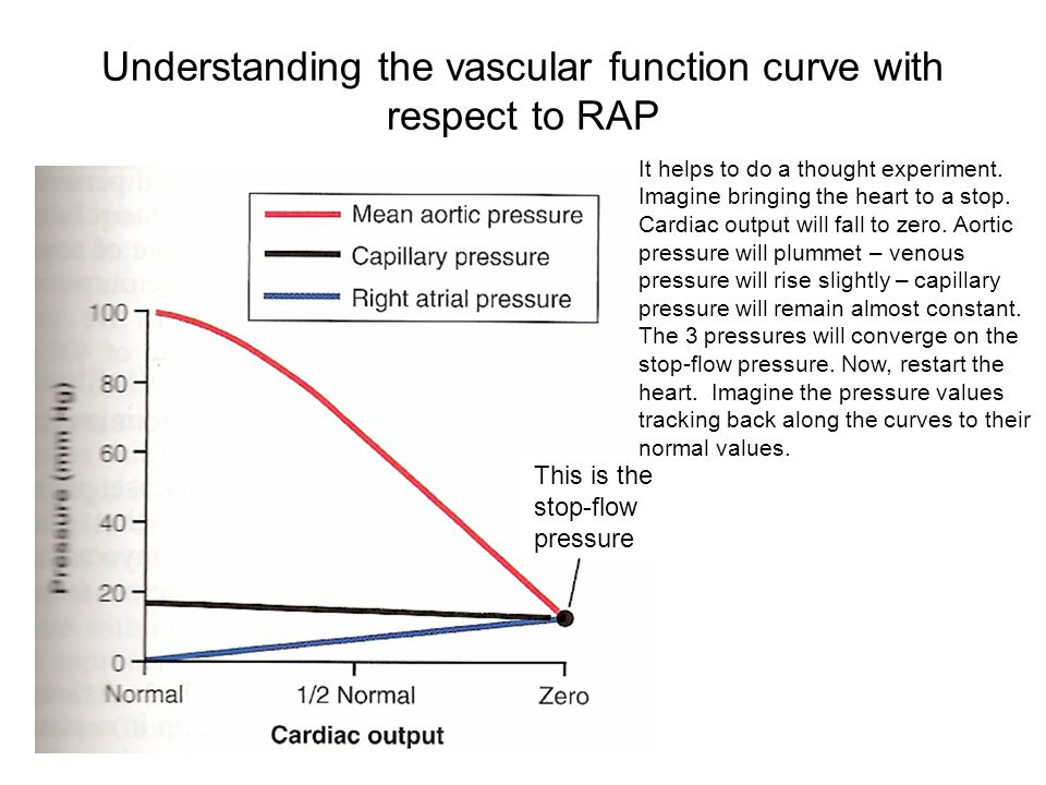 Understanding the vascular function curve with respect to RAP This is the stop-flow pressure It helps to do a thought experiment.