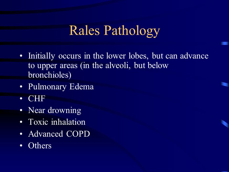 Rales Pathology Initially occurs in the lower lobes, but can advance to upper areas (in the alveoli, but below bronchioles) Pulmonary Edema CHF Near drowning Toxic inhalation Advanced COPD Others