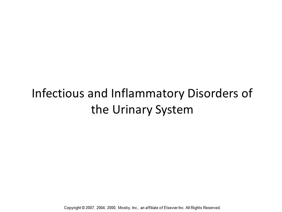 Infectious and Inflammatory Disorders of the Urinary System