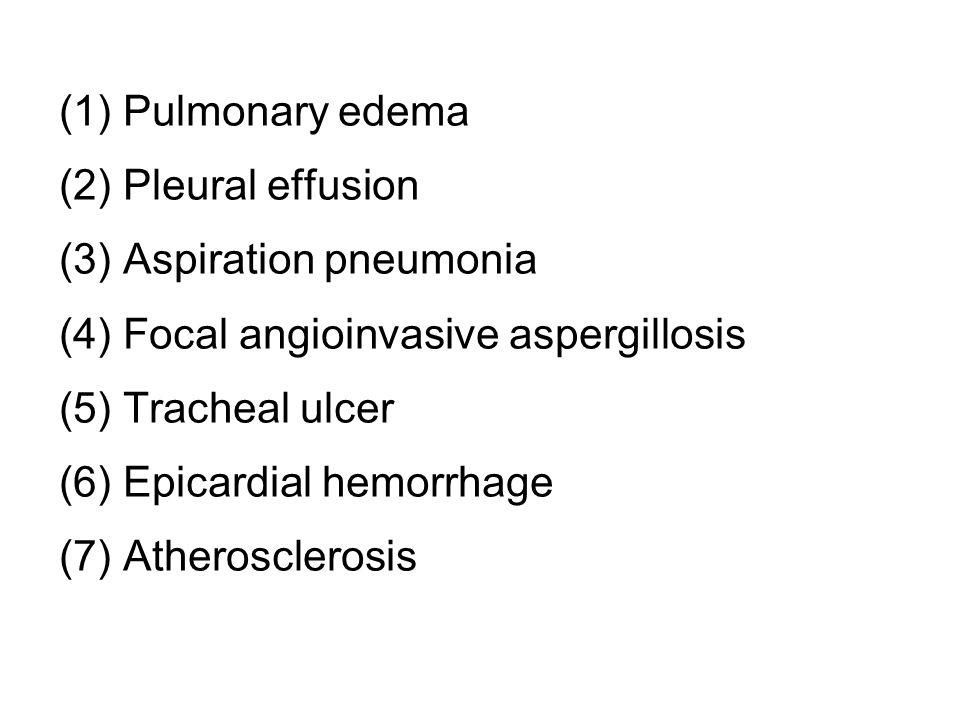 (1) Pulmonary edema (2) Pleural effusion (3) Aspiration pneumonia (4) Focal angioinvasive aspergillosis (5) Tracheal ulcer (6) Epicardial hemorrhage (7) Atherosclerosis