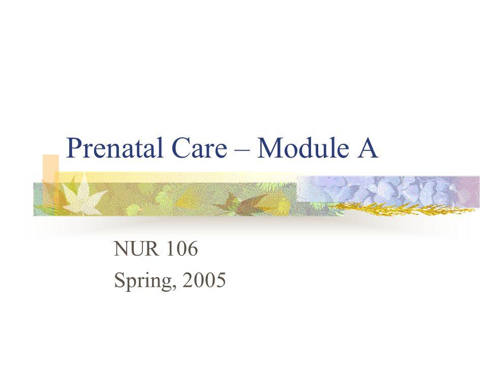 Prenatal Care – Module A NUR 106 Spring, 2005