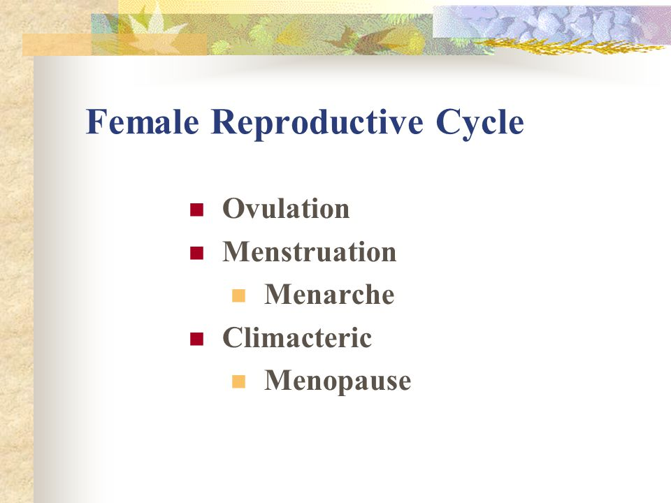 Female Reproductive Cycle Ovulation Menstruation Menarche Climacteric Menopause